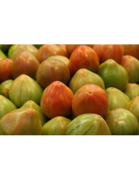 Valencia Tomato seeds