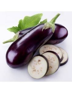 Eco long purple eggplant seeds