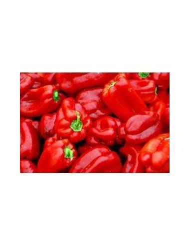 ECO long pepper seeds