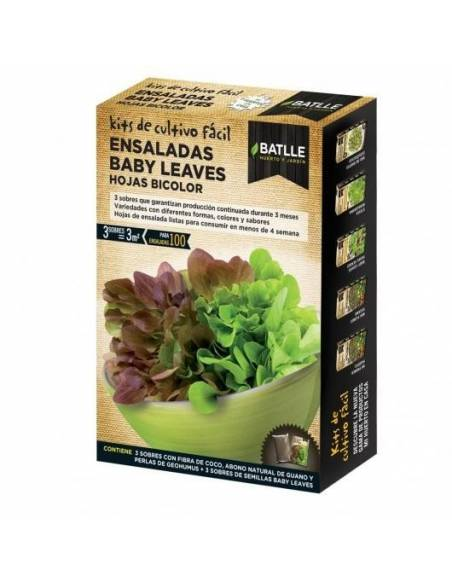 Mix baby salad leaves bicolor