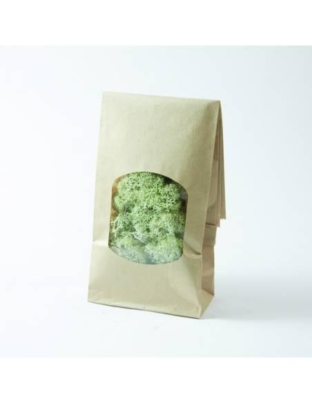 Lichen Mint