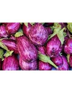 Eggplant seeds listed Gandia
