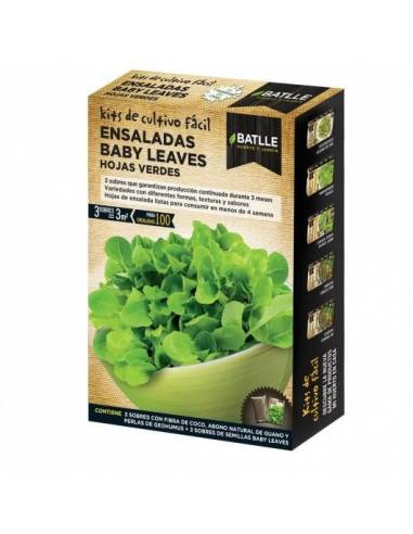 Mix ensaladas baby leaves hojas verdes