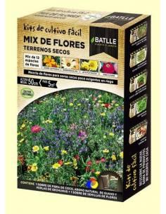 Mix dry land flowers