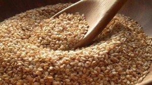 conservar-semillas-2